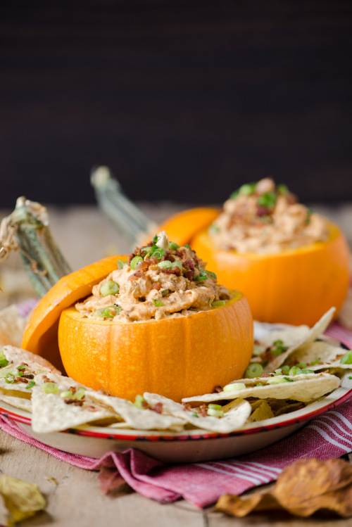 Caramelized-Onion-Bacon-Pumpkin-Dip-2797